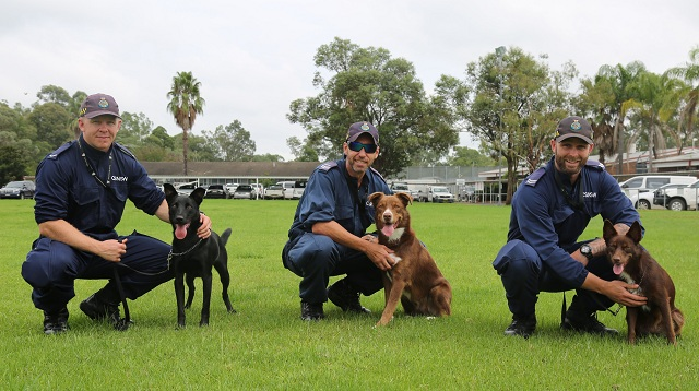 K9 Handlers with K9s Shadow Seb and Jazzie